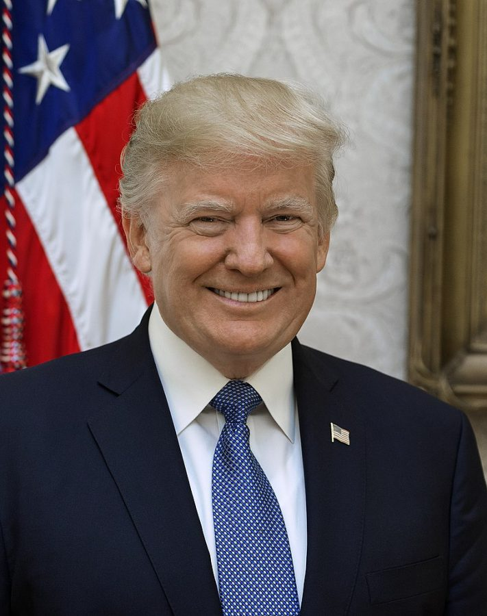 This+is+the+official+White+House+portrait+of+President+Donald+Trump.