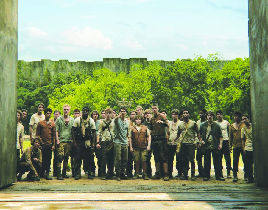 Unravel the thrilling mysteries of 'The Maze Runner'