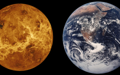 Discovery of Life on Venus?
