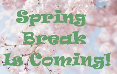 The FHS Falcon Cafe will be distributing meal bundles for Spring Break next week.
