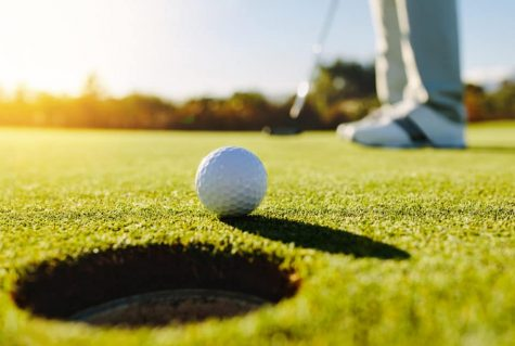 The FHS golf team is midway through the season and is two in one.